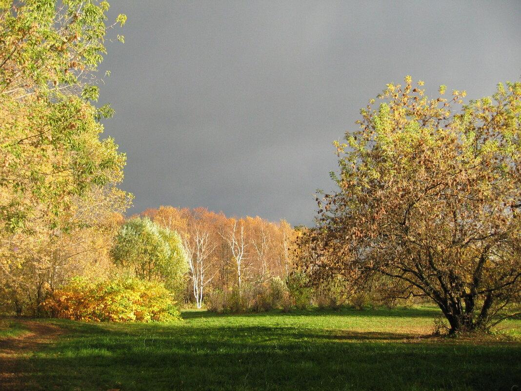 Осенний парк - Хвостища