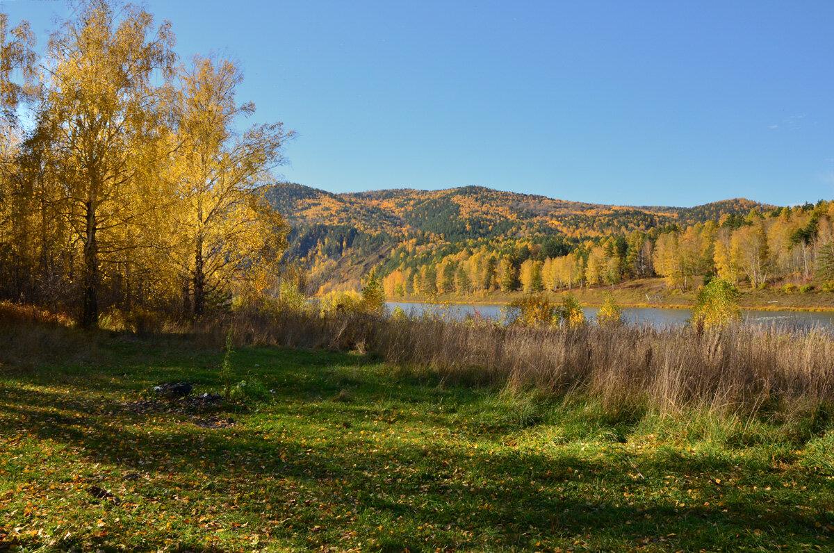 Осень в Сибири.Река Мана - Татьяна Соловьева