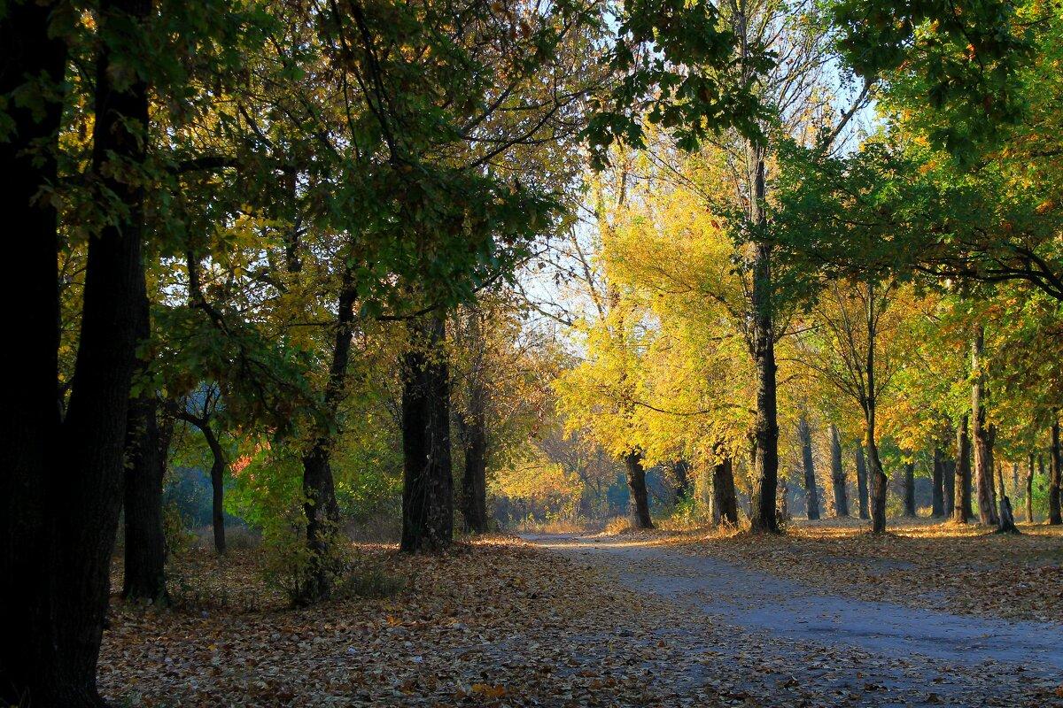Осеннее утро - Валерий Хинаки