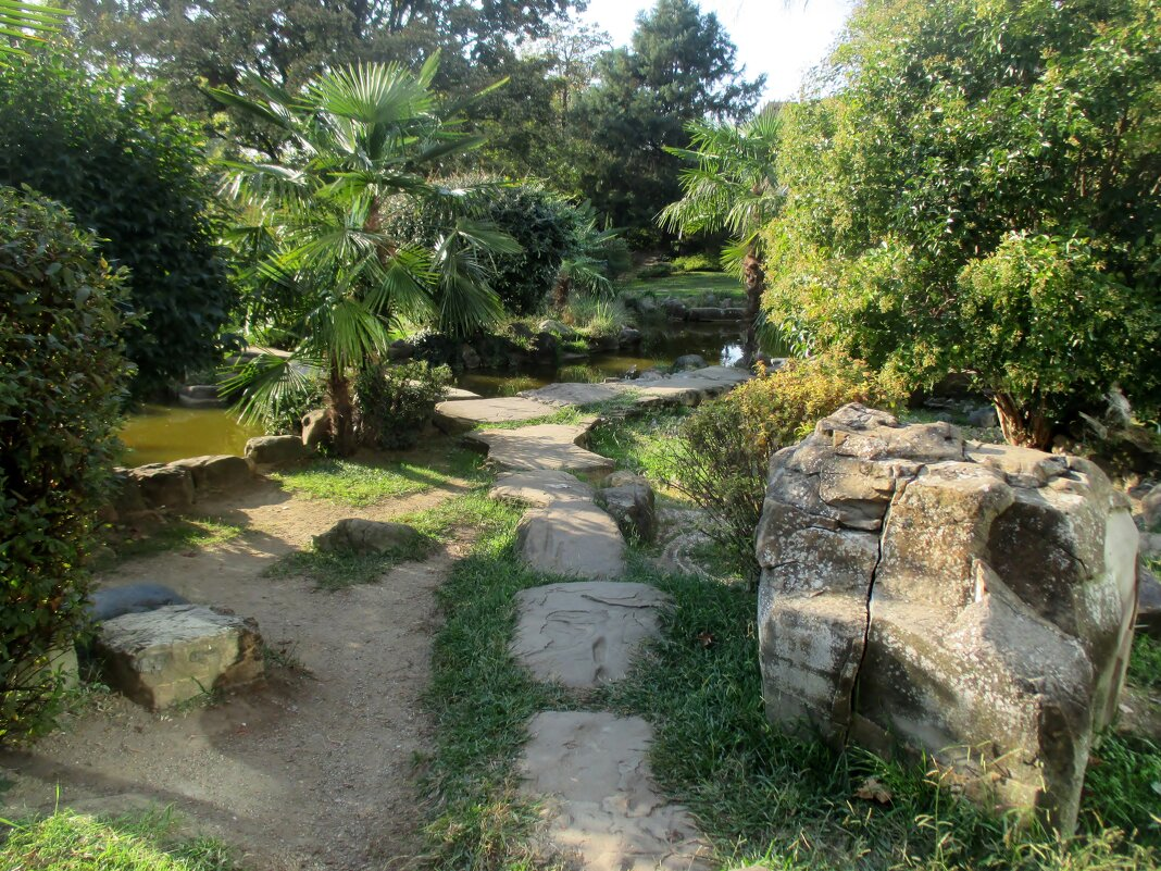 Сочи... Японский сад... - Нина Бутко