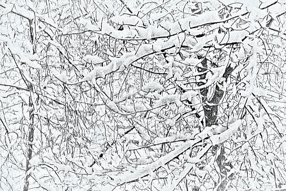 Графика зимы - Nikolay Monahov