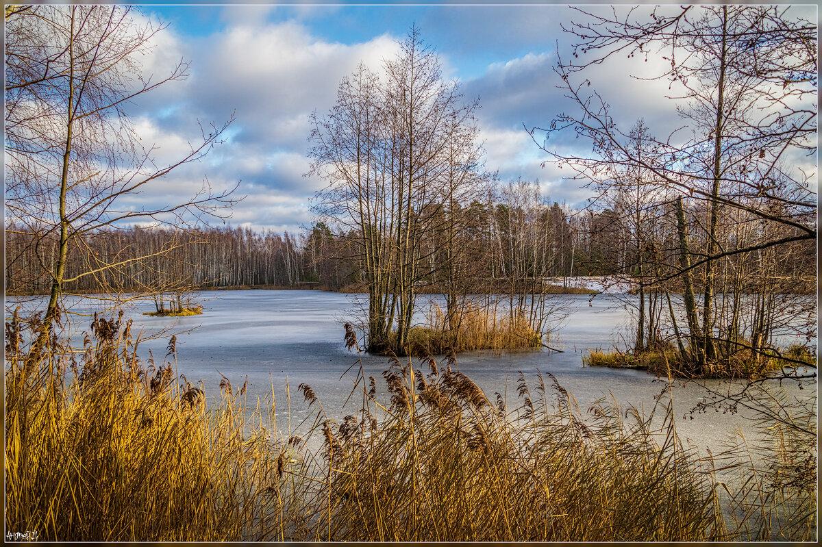 Первое утро зимы 2 - Андрей Дворников