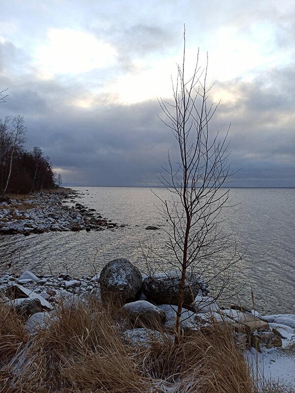 Декабрь на Ладожском озере - VL