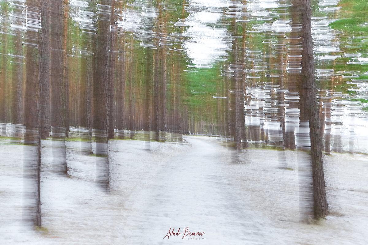 Fotostuudio Akolit, Tallinn,fotograaf Arkadi Baranov. - Аркадий  Баранов Arkadi Baranov