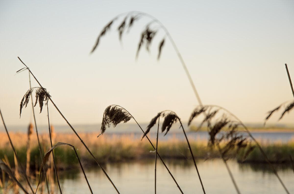 Волга вид м берега - Юрий Хайров