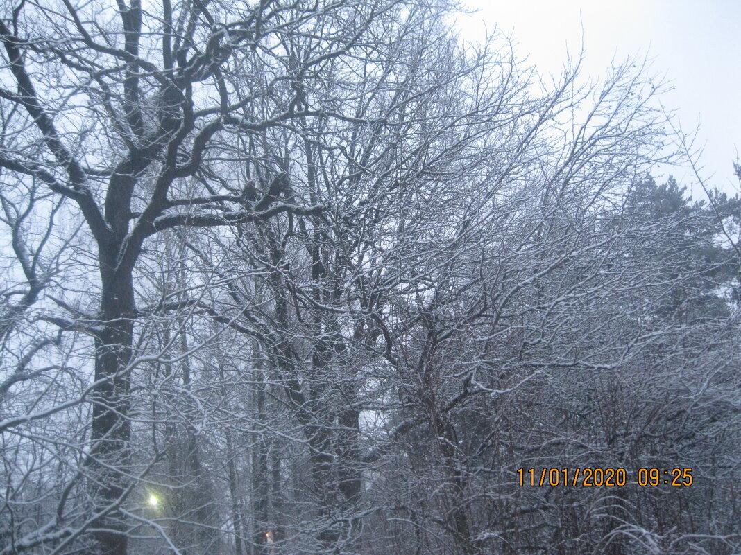 Зима - Maikl Smit