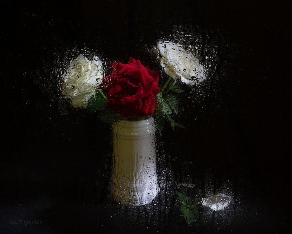 розы в белом - Евгений Кирюхин