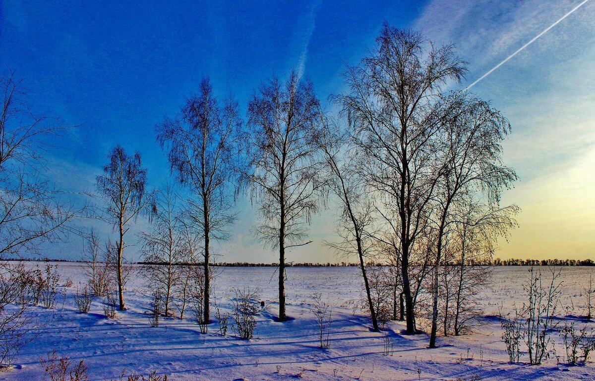 Краски зимнего заката. - Восковых Анна Васильевна