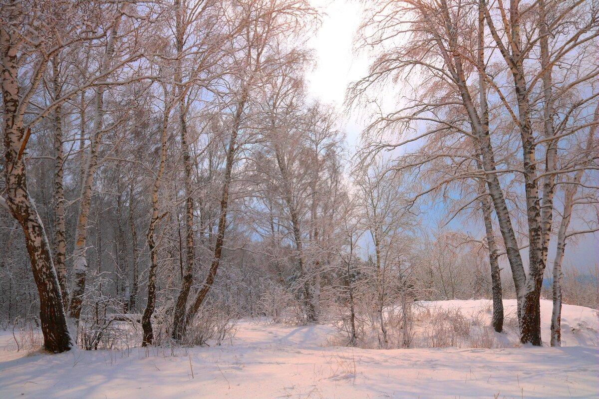 Зима-затейница