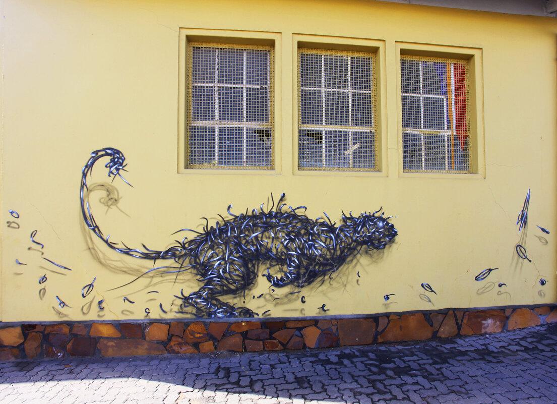 Графити в Виндхуке - Зуев Геннадий