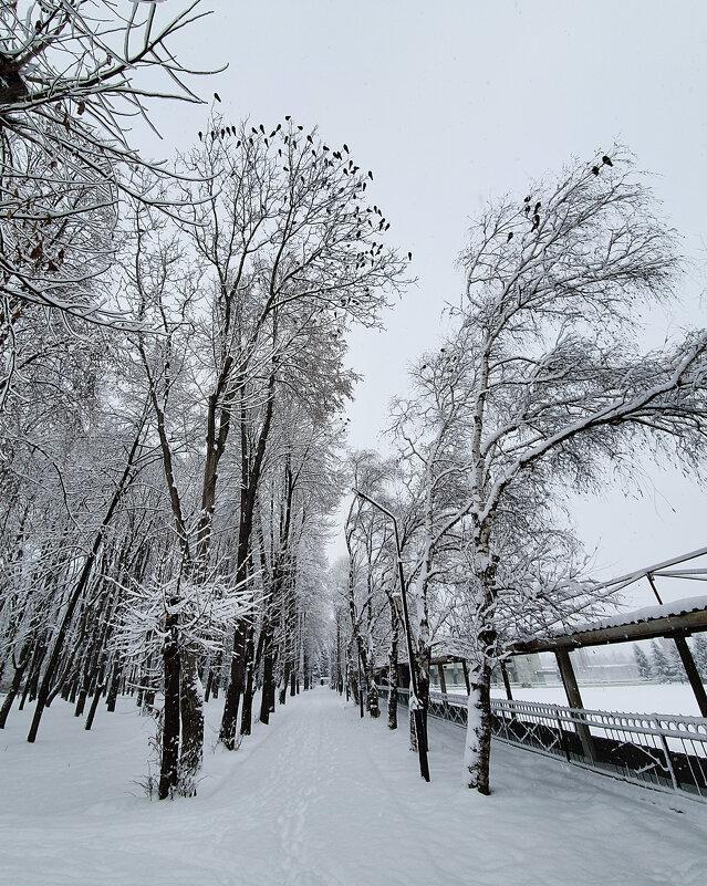 зима в районе... - Батик Табуев
