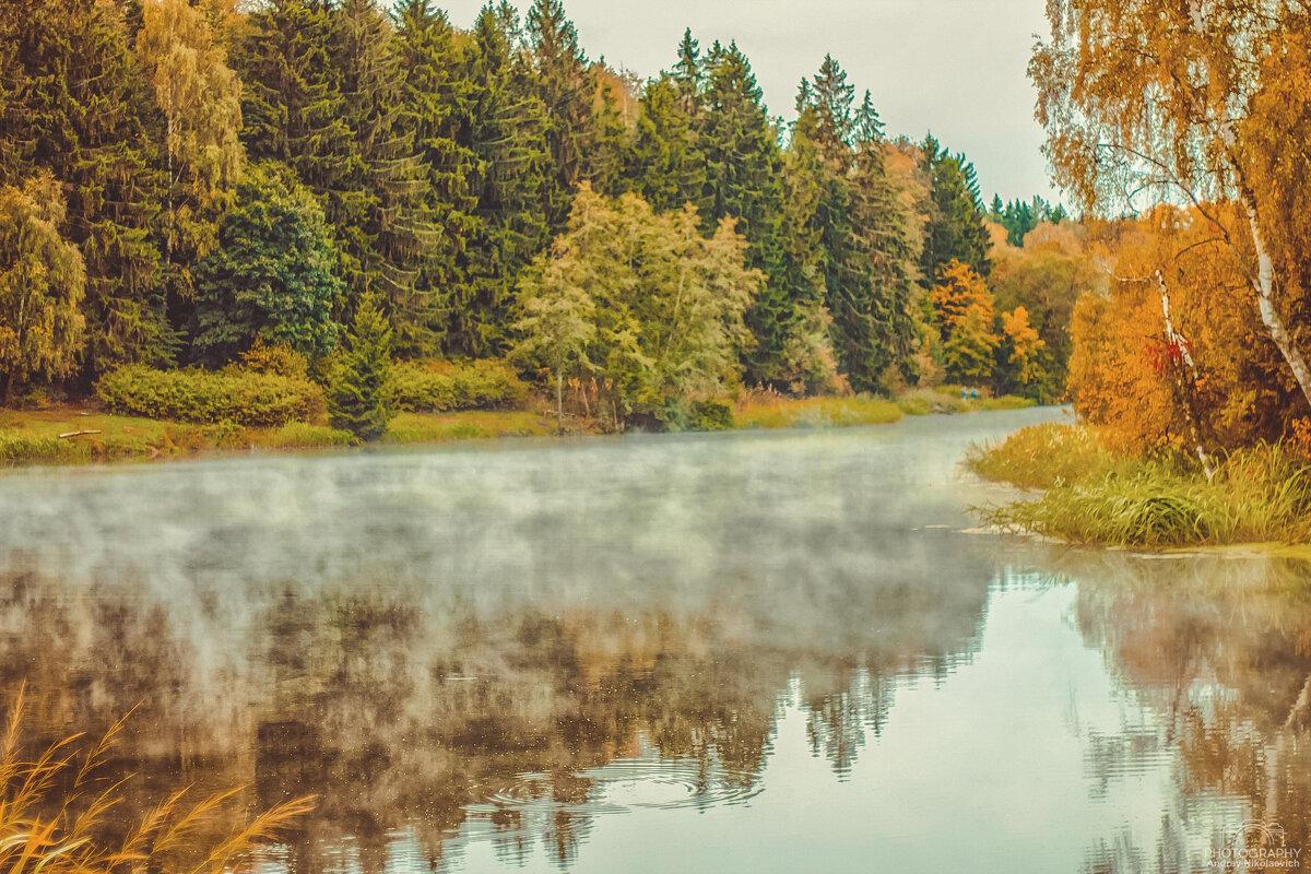 На речке. - Андрей