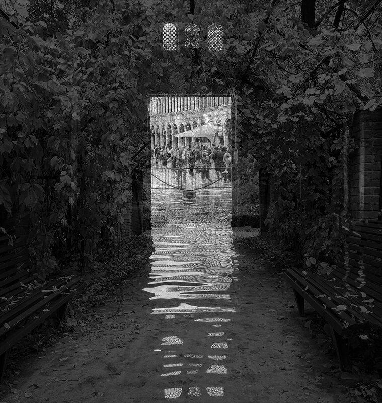 Затопленный тоннель ... - Лариса Корж
