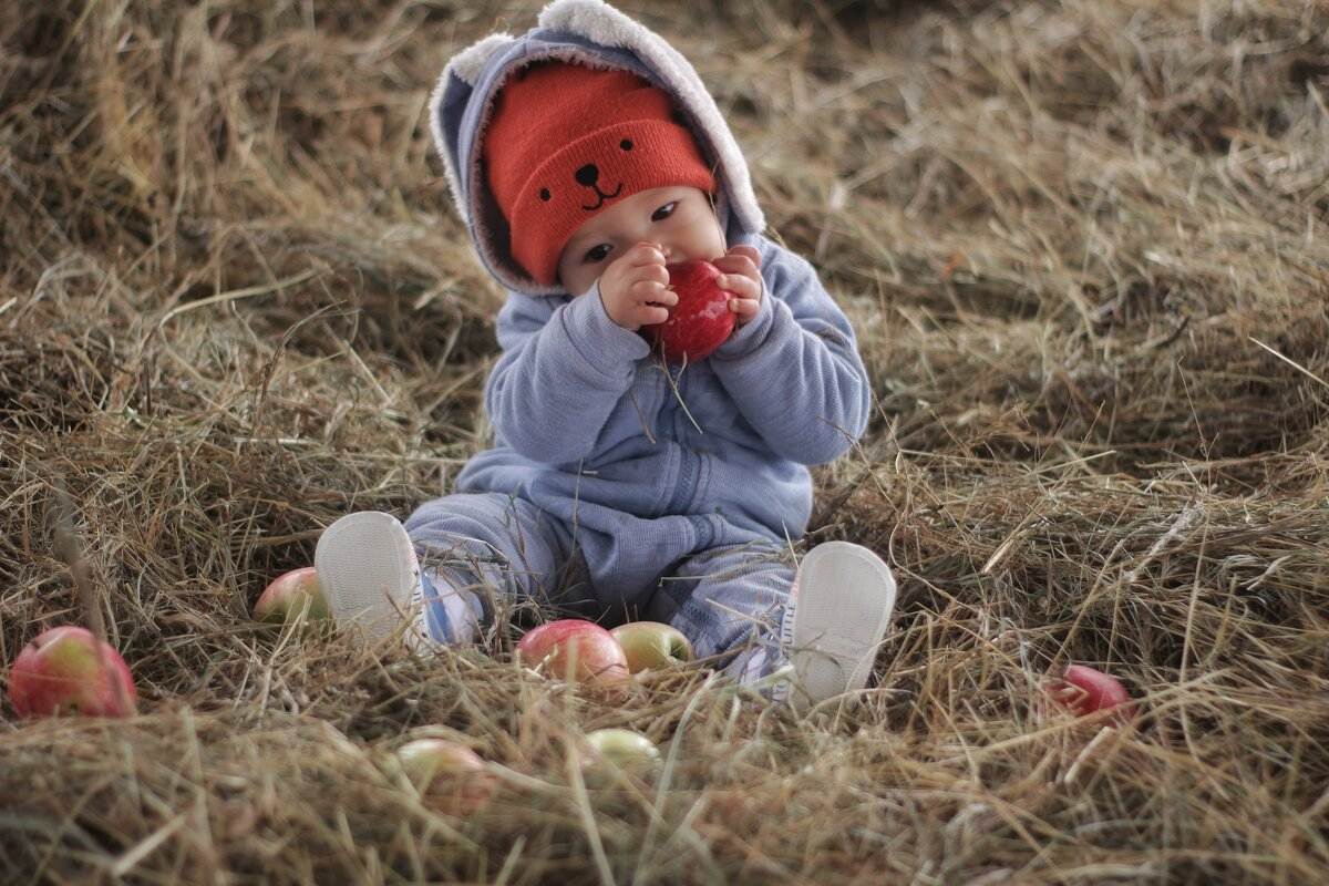 Яблочки - Елена Рива