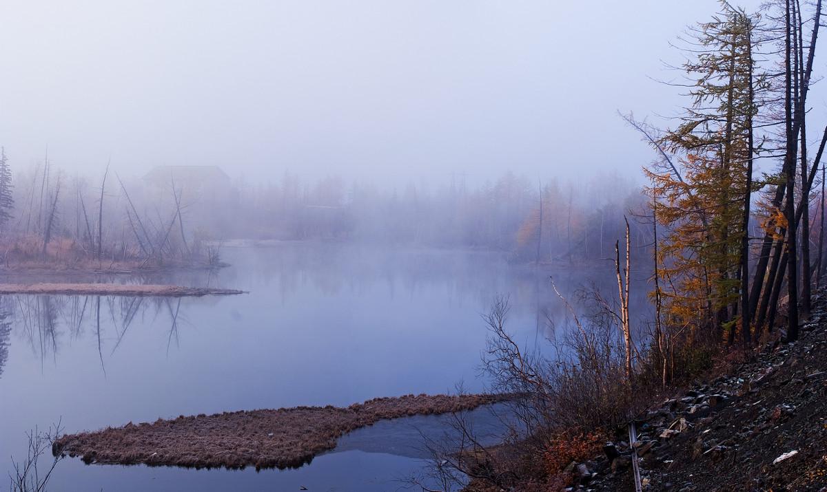 туман - Андрей Кийко