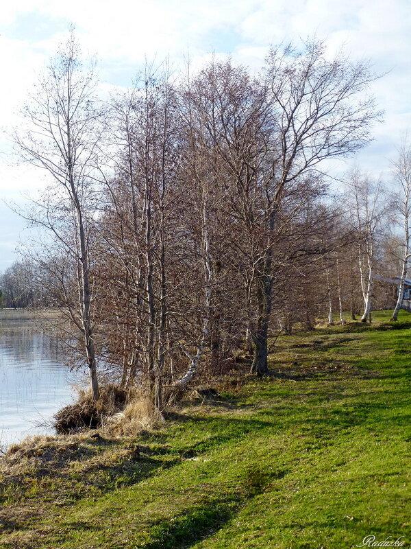Отдых на берегу Онежского озера - Raduzka (Надежда Веркина)