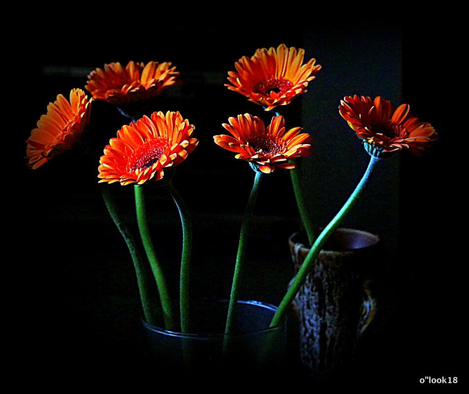 цветы для любимых танцующие - Олег Лукьянов