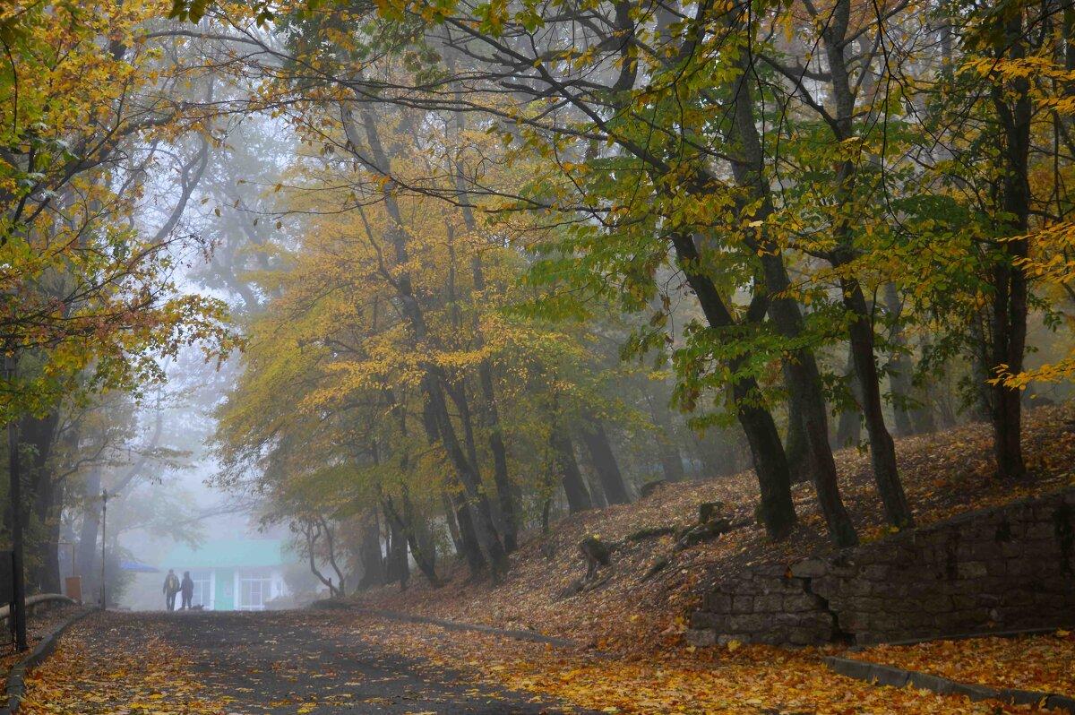 Осенний променад....... - Юрий Цыплятников