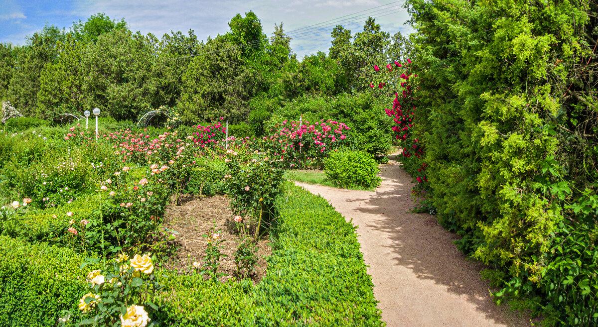 Прогулка по парку.Уголок розария - Варвара