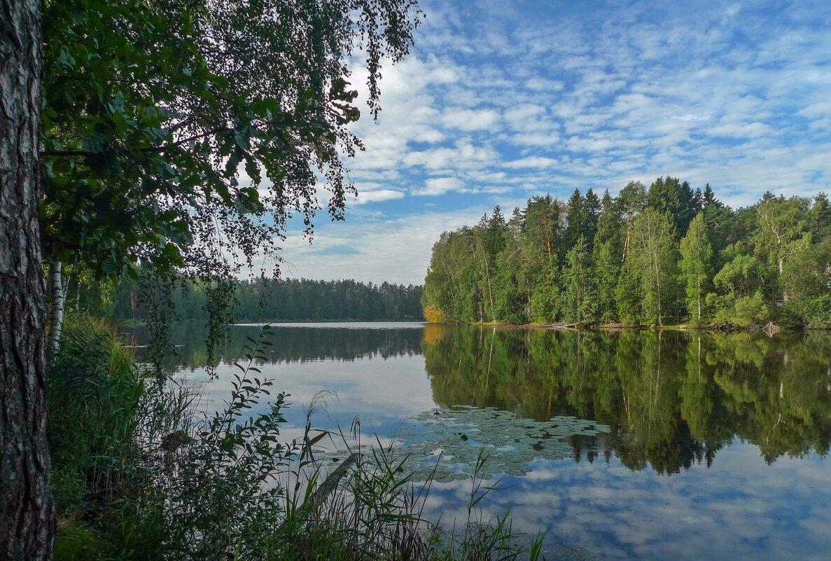 На берегу Лукового озера - Валерий Иванович