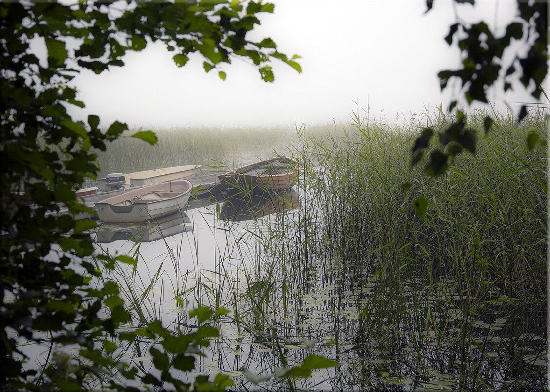 Окно в тумане - liudmila drake