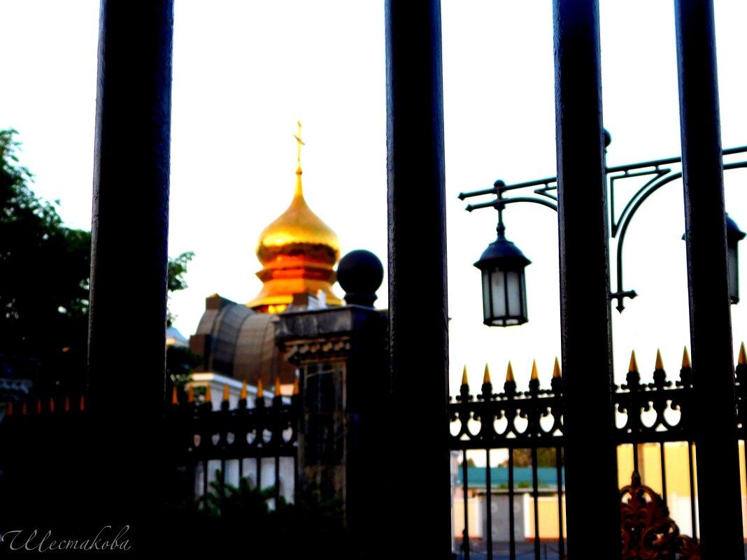 Ташкент - Наталья Шестакова