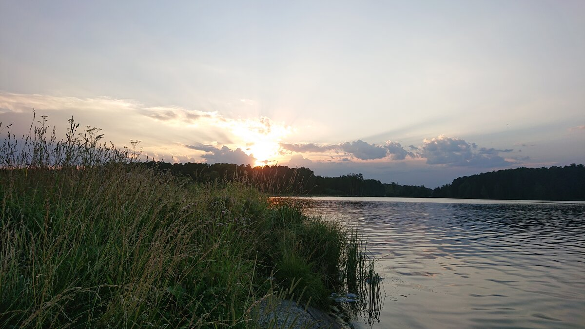 Вечерний пруд - # fotooxota