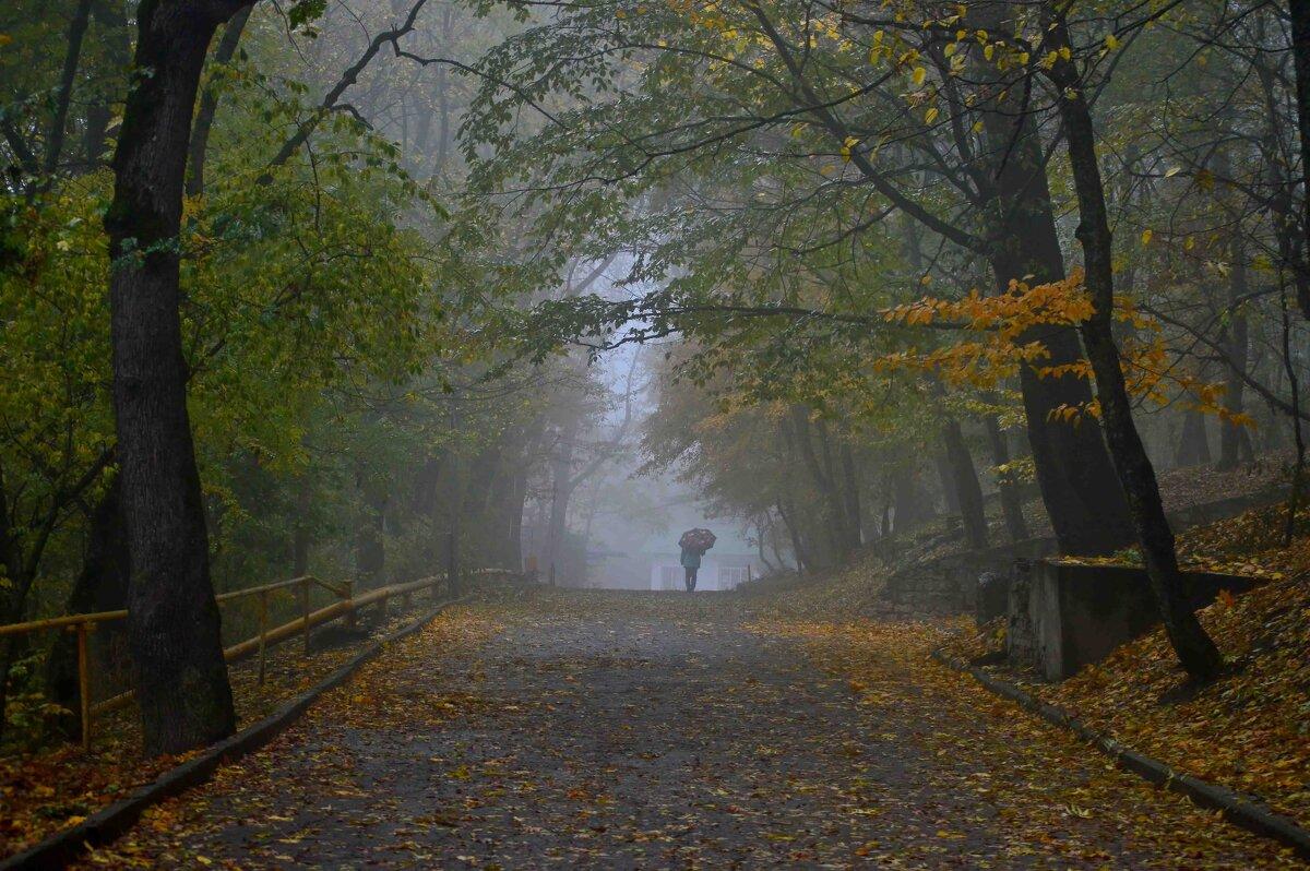 Осенний терренкур..... - Юрий Цыплятников