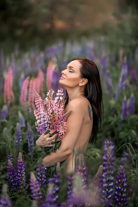 Люпины - Yana Sergeenkova