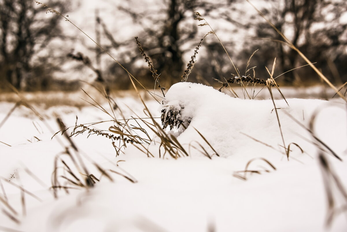 Зима - Руслан