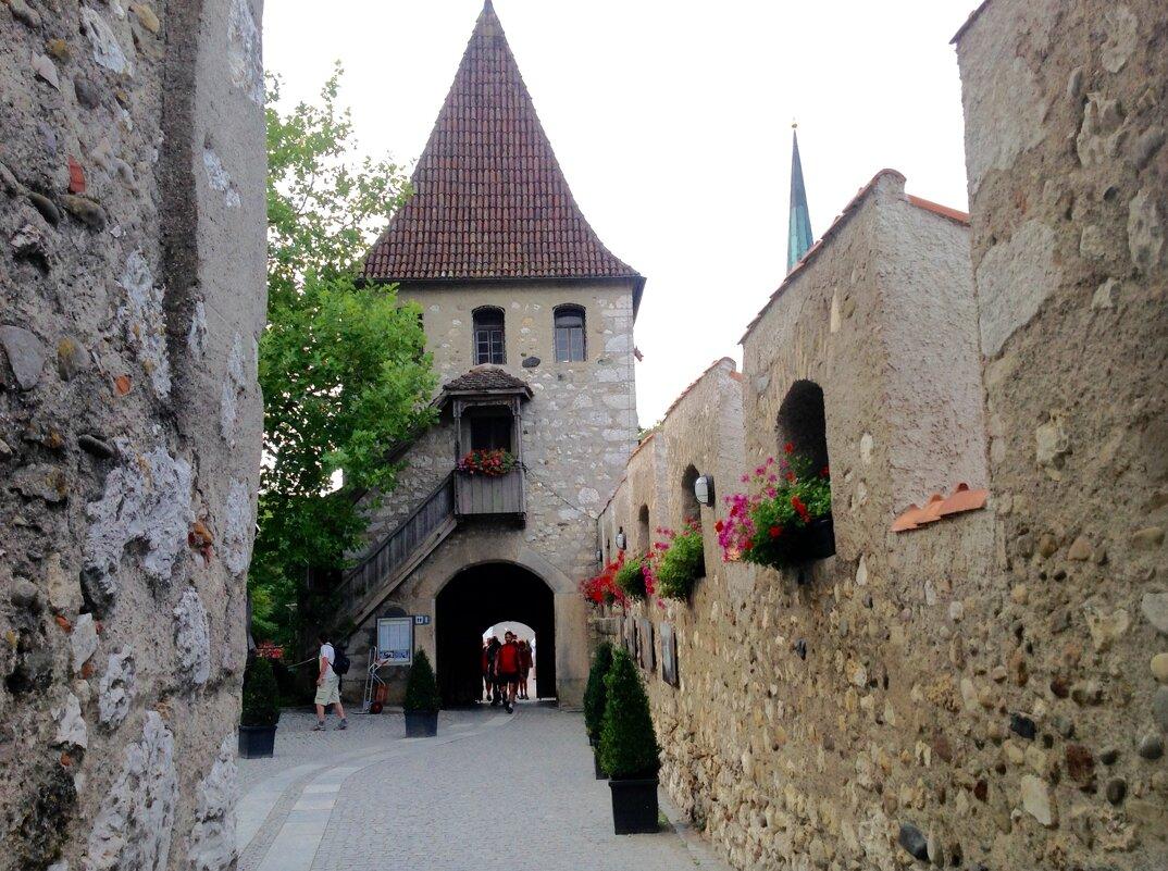 "замок ""Laufen"" - Светлана Баталий"