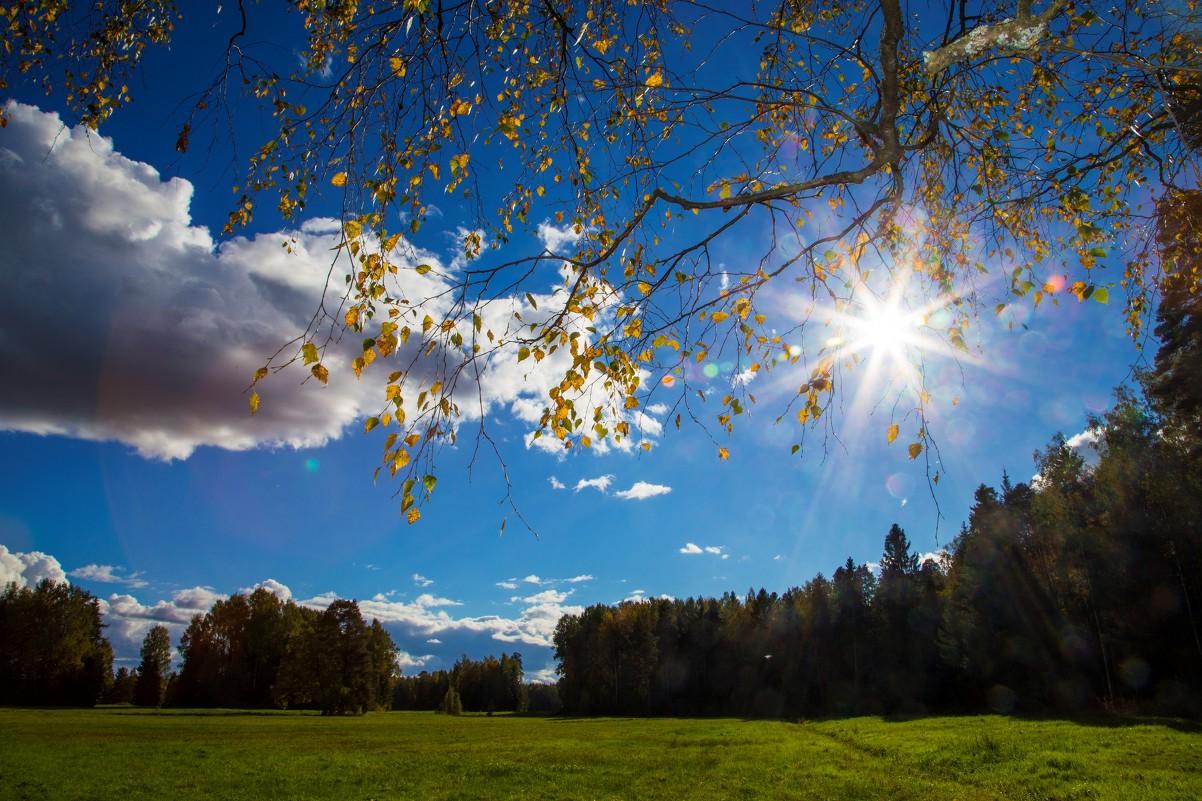 Осеннее солнце - Ольга Соболева