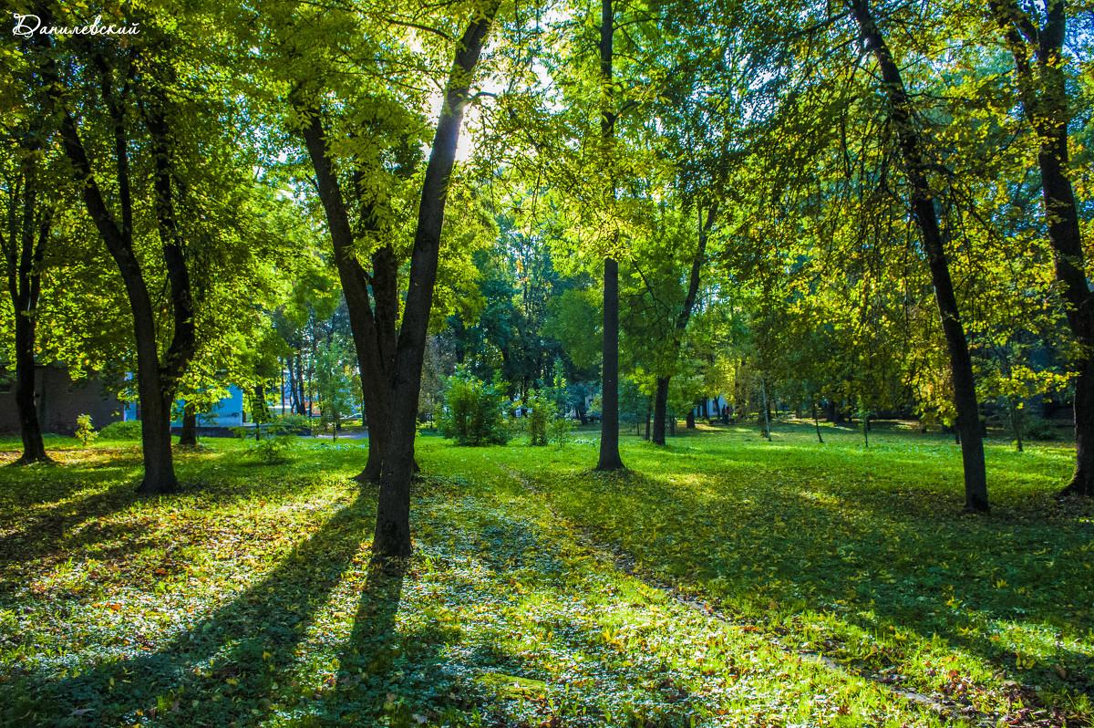 Осенний парк. - Павел Данилевский