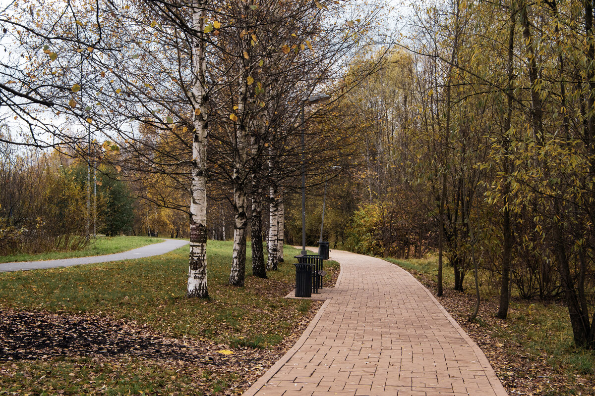 Осень и пустота - Яков Реймер