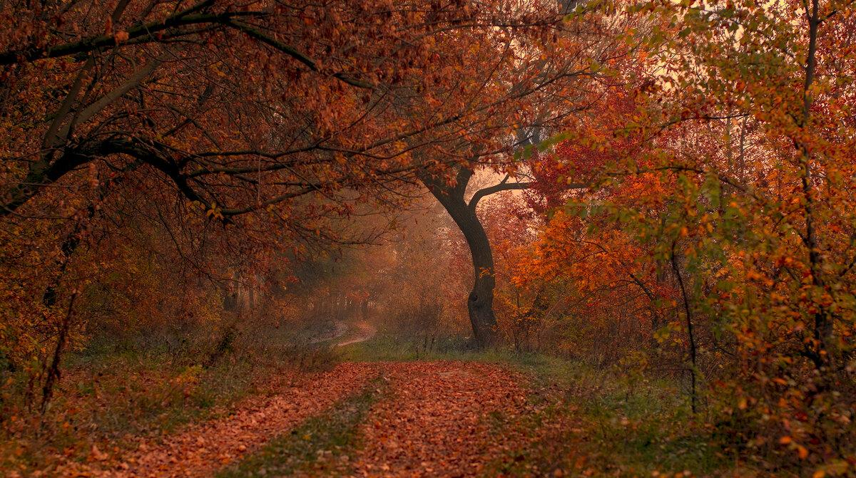 Осень - Валерий Черняк
