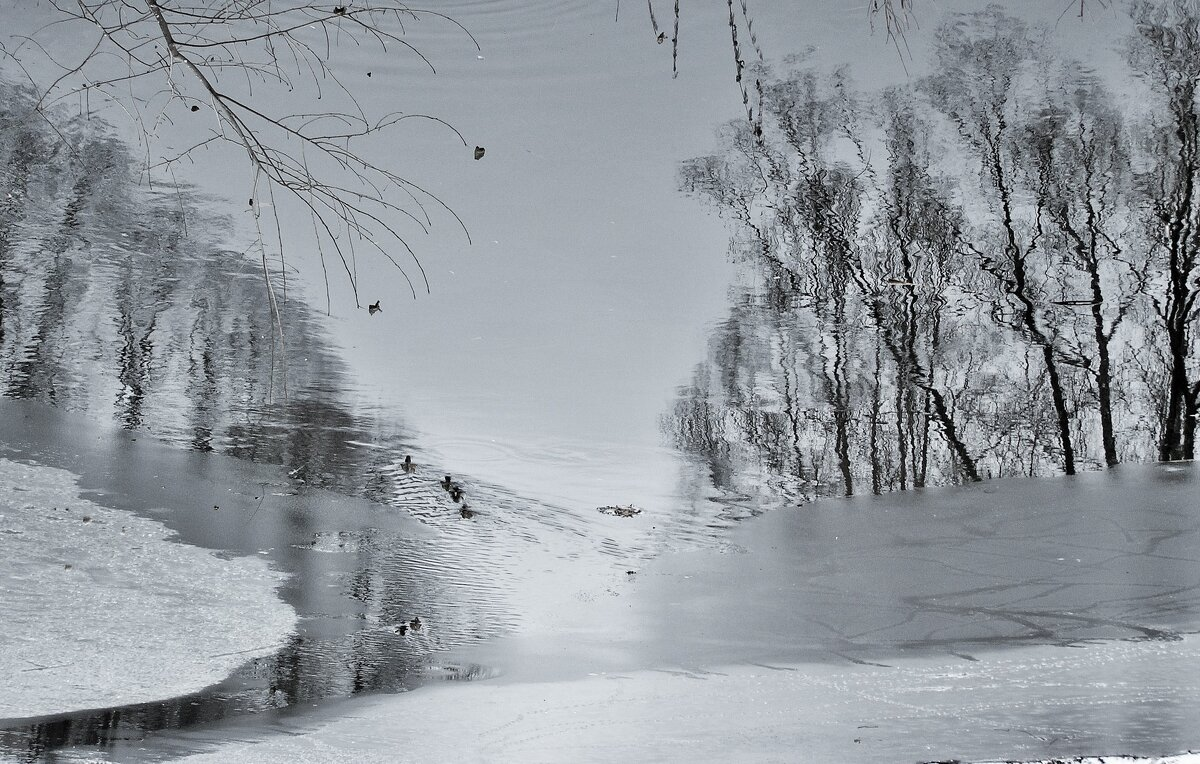 Тонкий лед - Tanja Gerster
