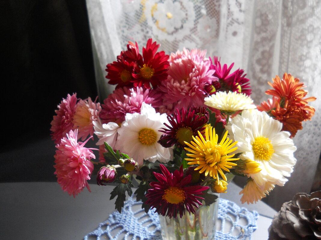 Разноцветье хризантем - Галина