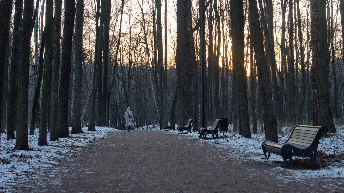 Зимний вечер в Нескучном саду - Михаил Танин