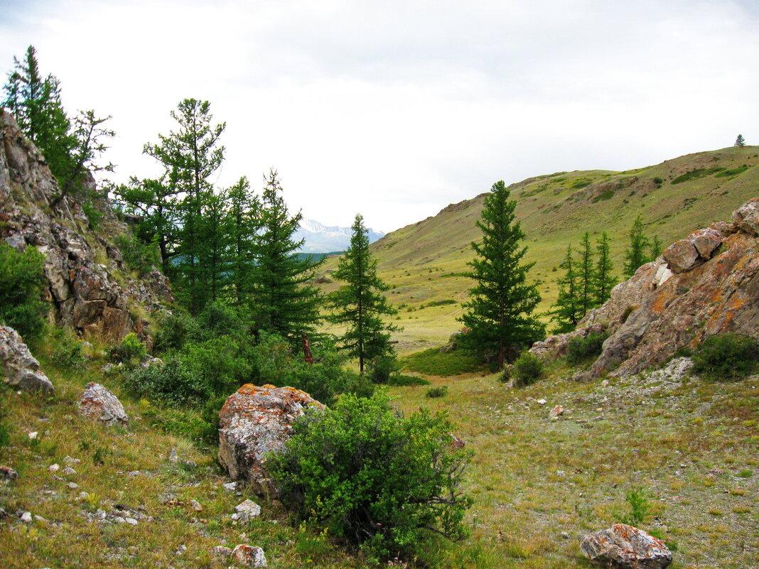 Чудесный летний день в горах - Галина