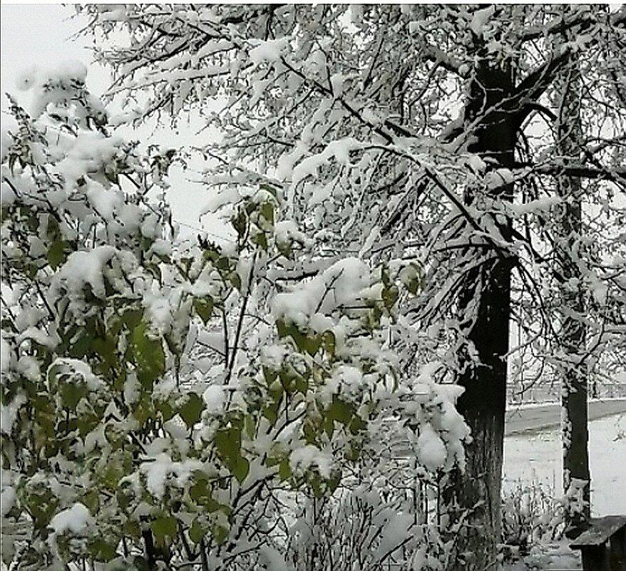 Так начиналася зима - Татьяна Грабежева