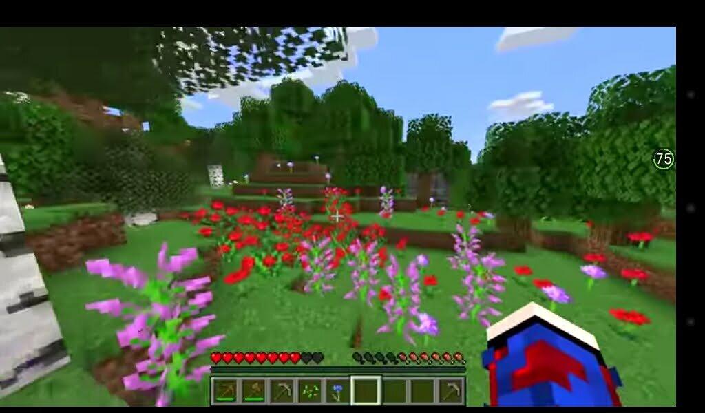 цветы - миша горбачев