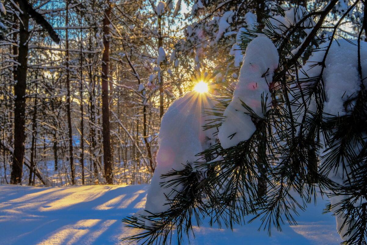 прогулка по морозу - Георгий А