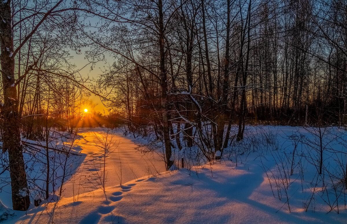 Мороз vs. Солнца # 8 - Андрей Дворников
