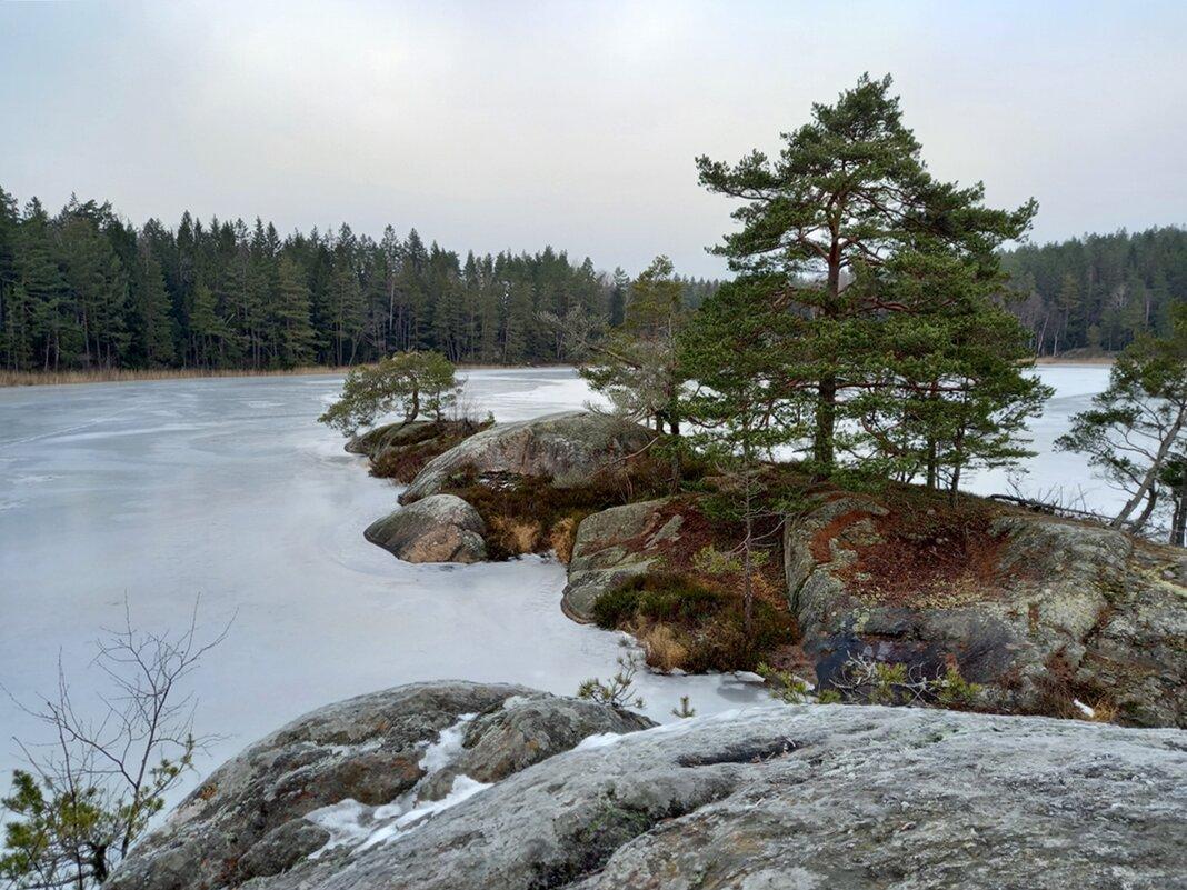Январский день в Швеции - Alm Lana