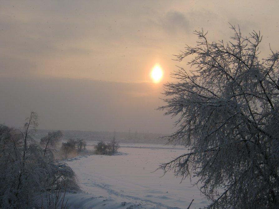 Зимний день - Ирина Березкина