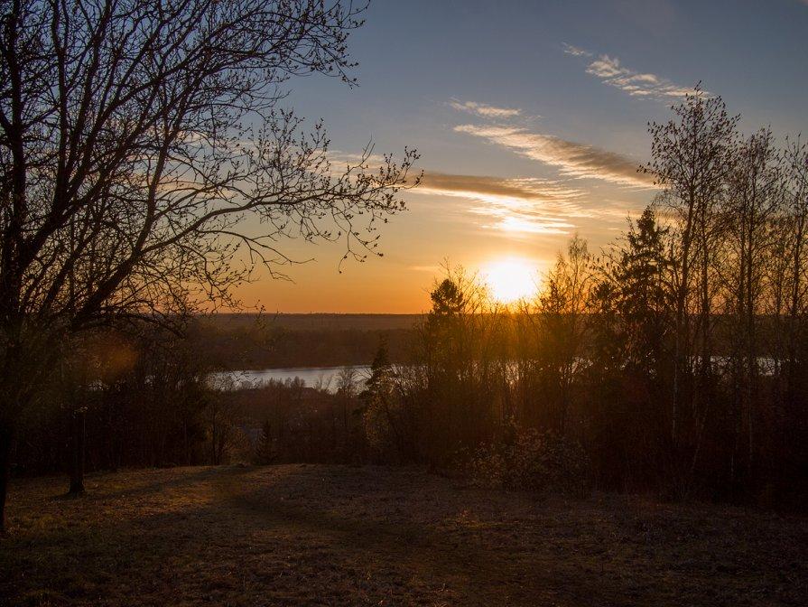 Вид на Красное село - Максим Судаков