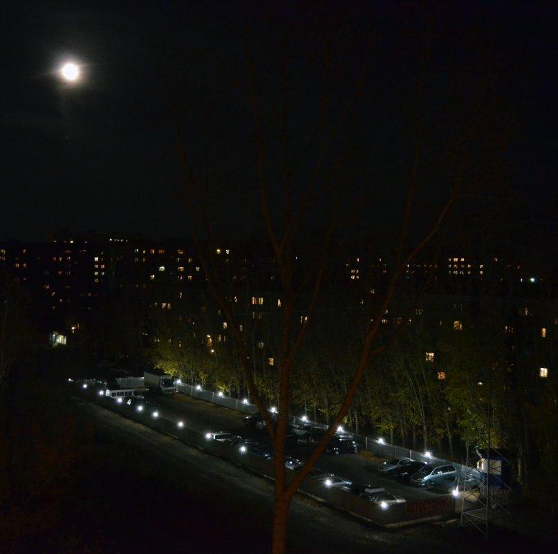 НЛО(неопознанный лунный объект) - Павел Самарович