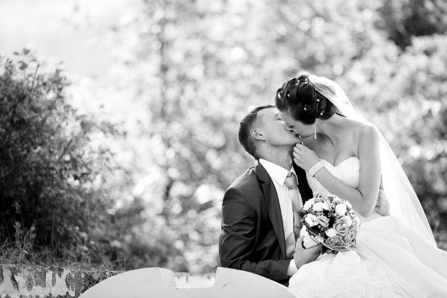 Свадебное фото - Алексей Тарабрин