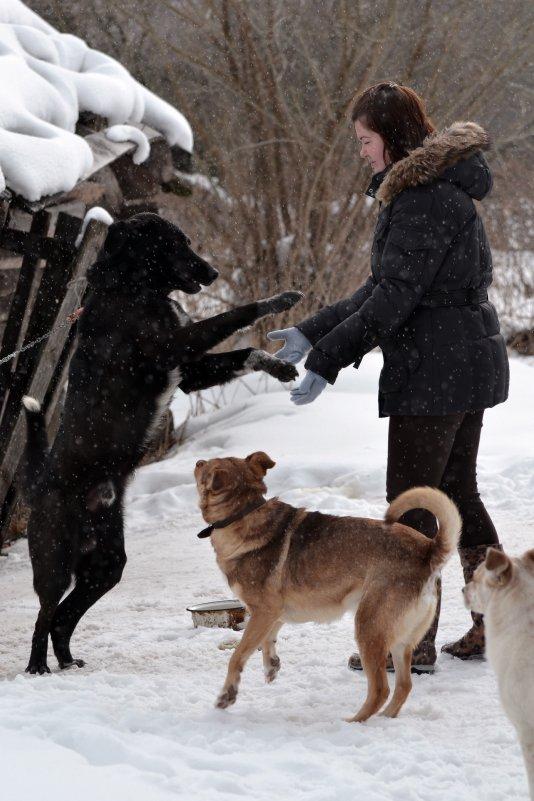 Дама с собачкой - Anna Kashkovskaya