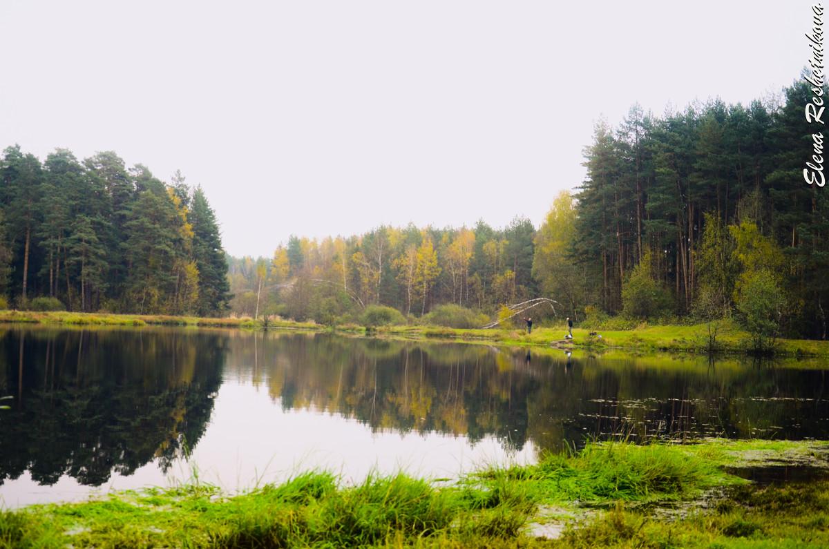 рыбалка решетников пруд одинцово